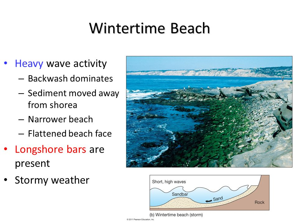 Wintertime Beach Heavy wave activity – Backwash dominates – Sediment moved away from shorea – Narrower beach – Flattened beach face Longshore bars are present Stormy weather