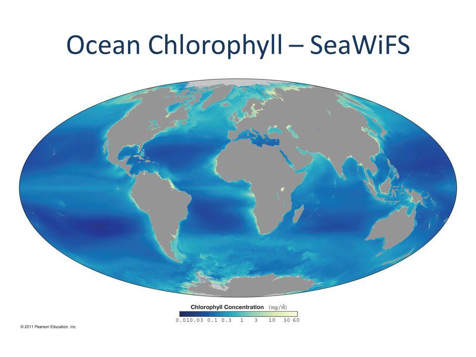 Ocean Chlorophyll – SeaWiFS