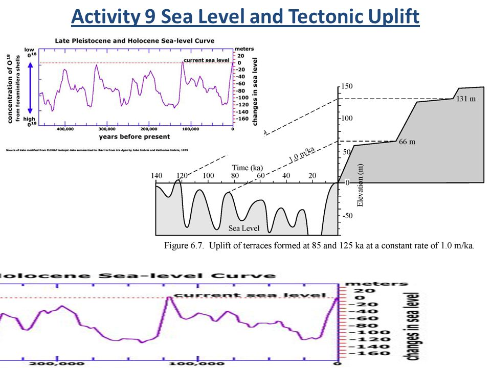 Activity 9 Sea Level and Tectonic Uplift