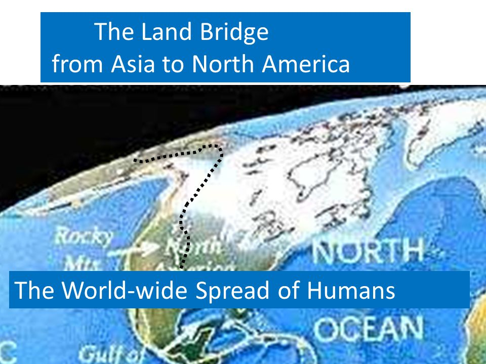 The Land Bridge from Asia to North America The World-wide Spread of Humans