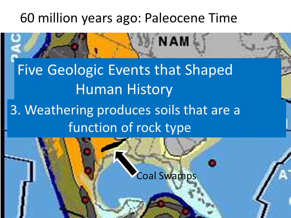 60 million years ago: Paleocene Time Coal Swamps 3.