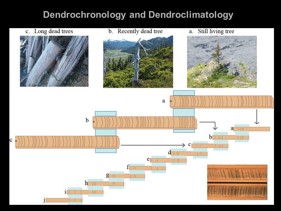 Dendrochronology and Dendroclimatology