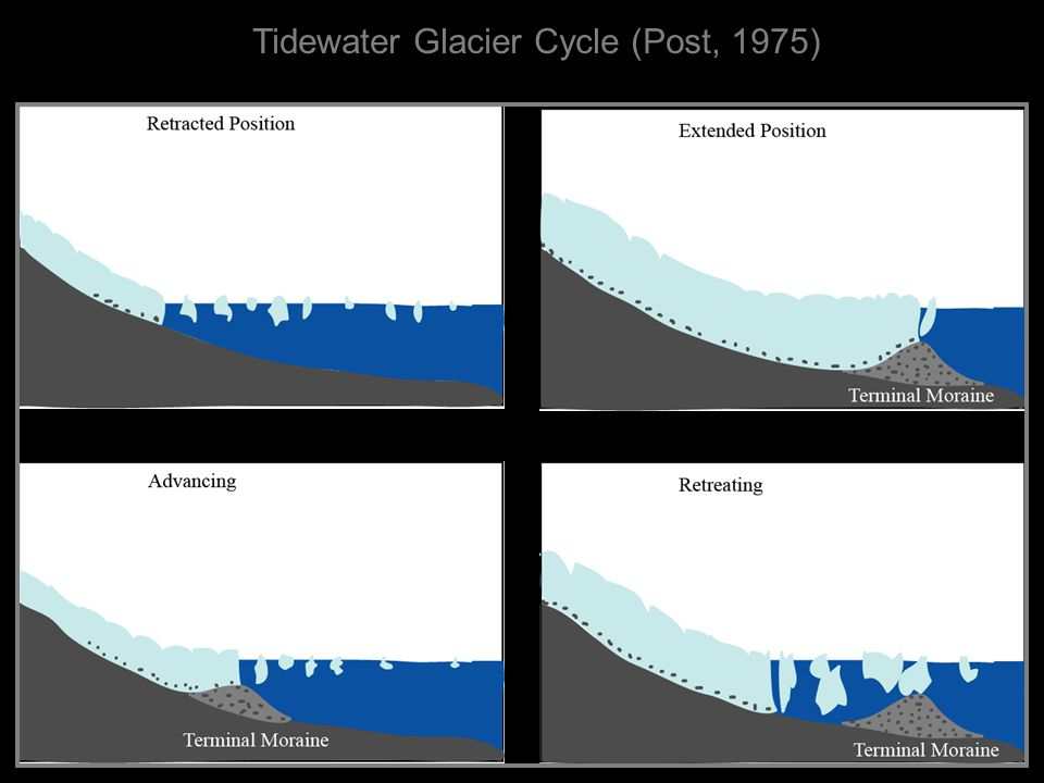 Tidewater Glacier Cycle (Post, 1975)