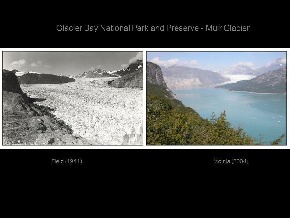Field (1941)Molnia (2004) Glacier Bay National Park and Preserve - Muir Glacier