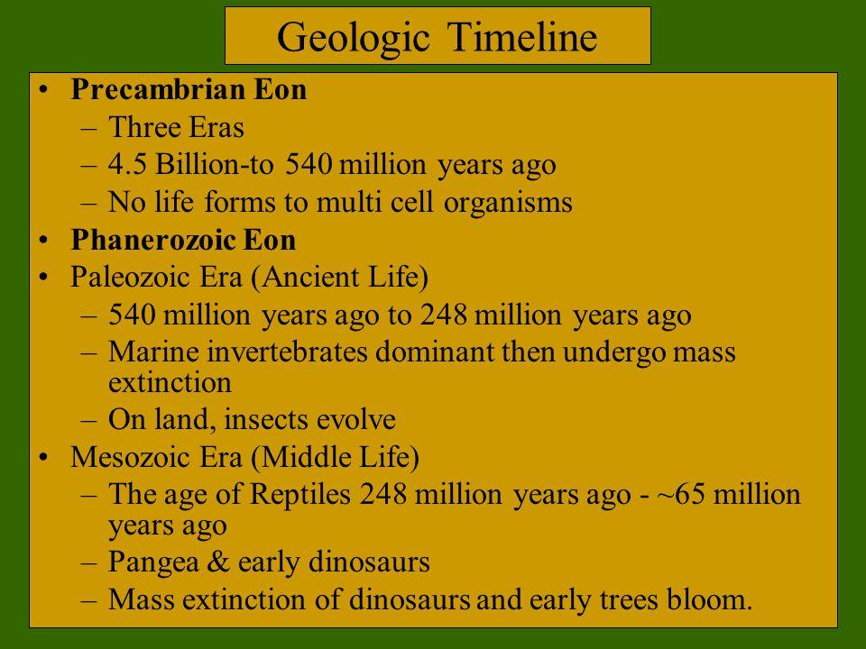 Geologic Timeline Precambrian Eon –Three Eras –4.5 Billion-to 540 million years ago –No life forms to multi cell organisms Phanerozoic Eon Paleozoic E