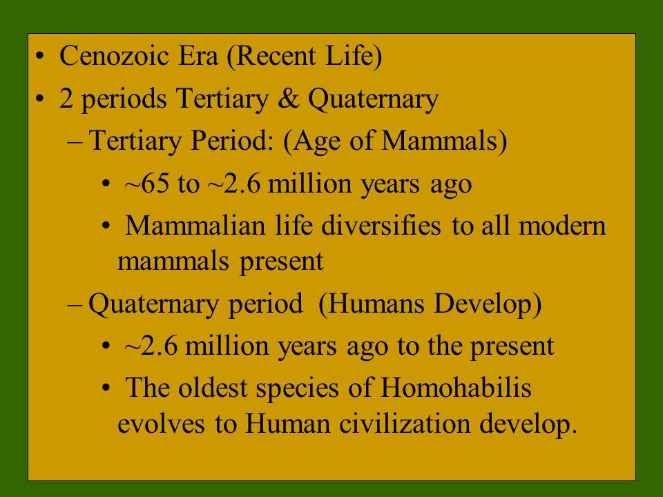 Cenozoic Era (Recent Life) 2 periods Tertiary & Quaternary –Tertiary Period: (Age of Mammals) ~65 to ~2.6 million years ago Mammalian life diversifies