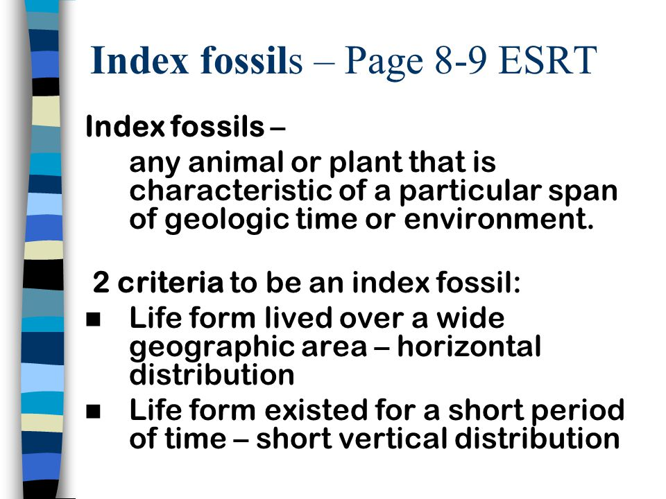 Index fossils – Page 8-9 ESRT Index fossils – any animal or plant that is characteristic of a particular span of geologic time or environment. 2 crite