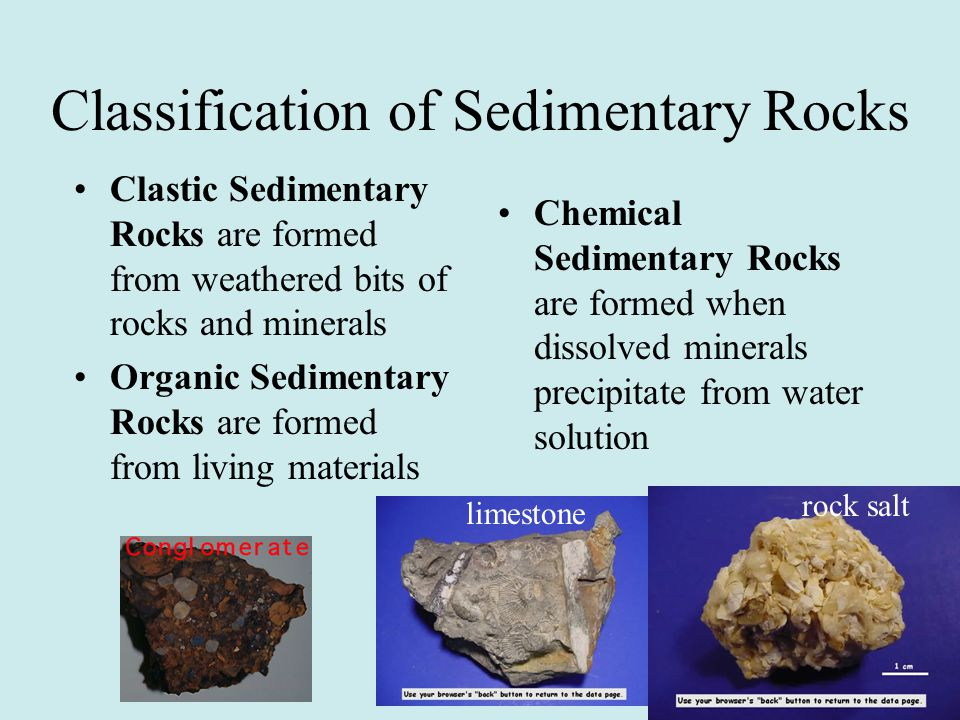 Classification of Sedimentary Rocks Clastic Sedimentary Rocks are formed from weathered bits of rocks and minerals Organic Sedimentary Rocks are forme