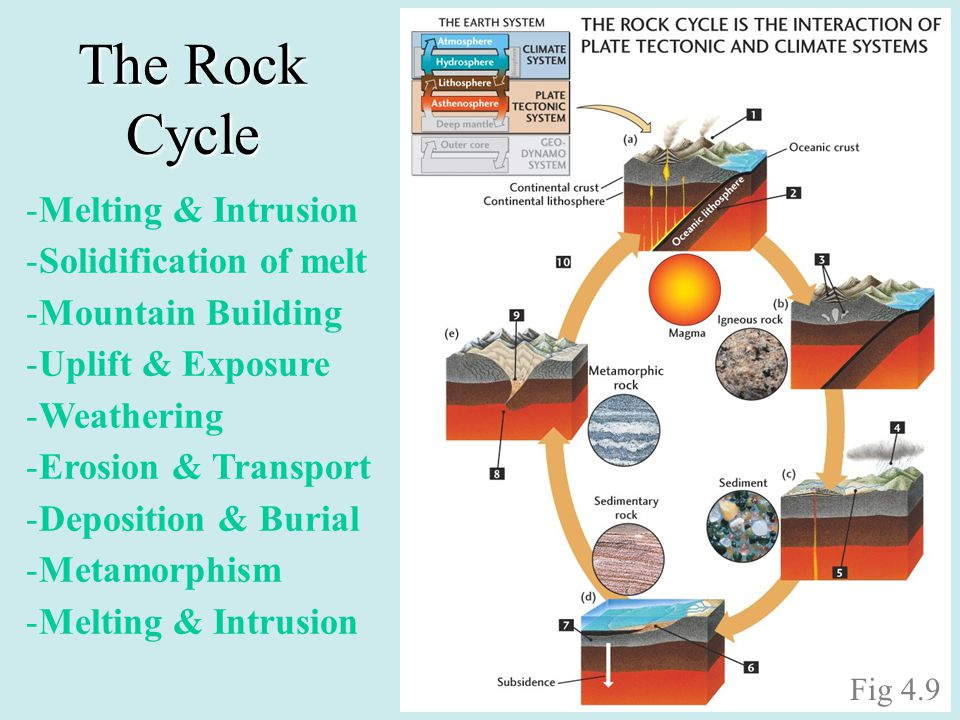 The Rock Cycle -Melting & Intrusion -Solidification of melt -Mountain Building -Uplift & Exposure -Weathering -Erosion & Transport -Deposition & Buria