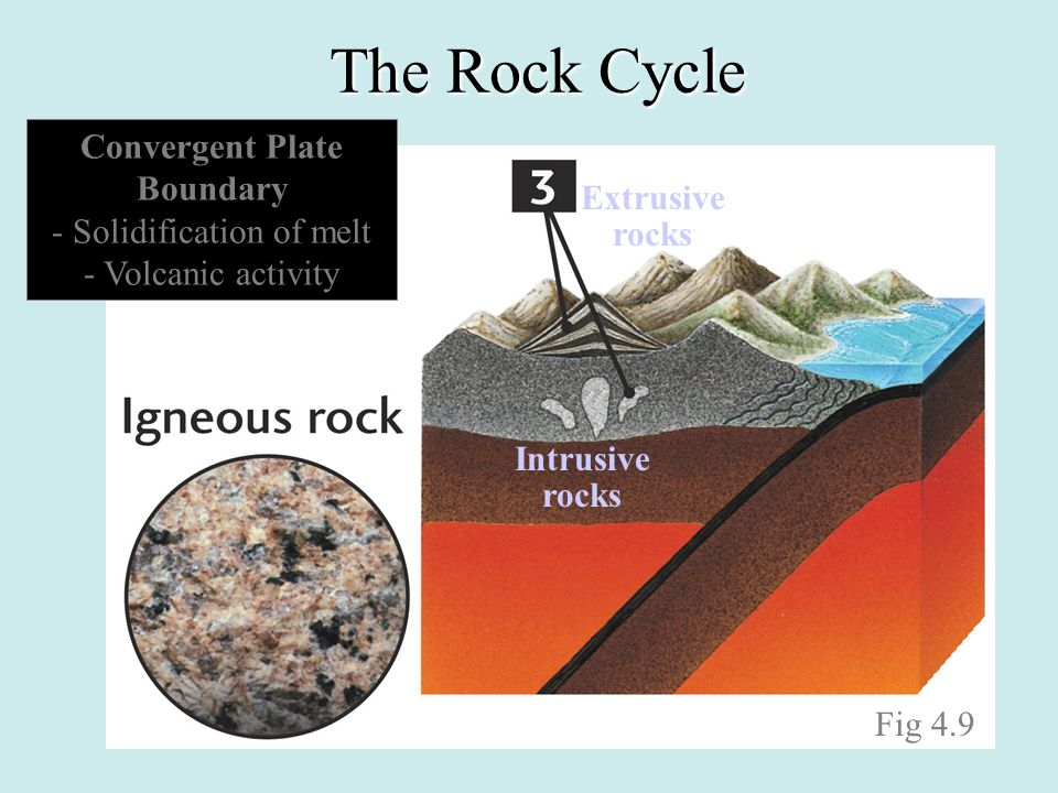The Rock Cycle Fig 4.9 Convergent Plate Boundary - Solidification of melt - Volcanic activity Intrusive rocks Extrusive rocks