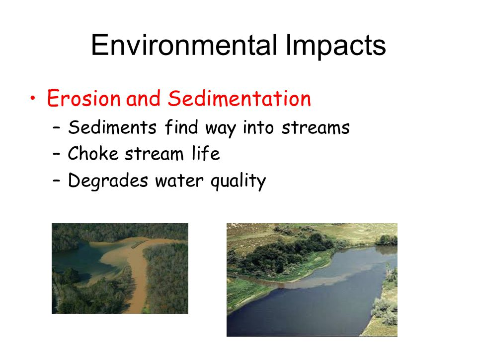 Environmental Impacts Erosion and Sedimentation –Sediments find way into streams –Choke stream life –Degrades water quality