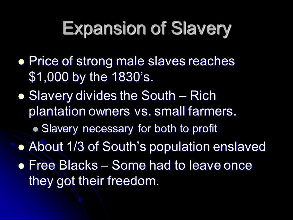 Slave Rebellions Nat Turner Nat Turner Virginia, 1831.