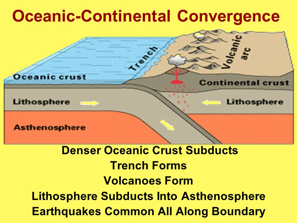 Oceanic-Continental Convergence Denser Oceanic Crust Subducts Trench Forms Volcanoes Form Lithosphere Subducts Into Asthenosphere Earthquakes Common All Along Boundary