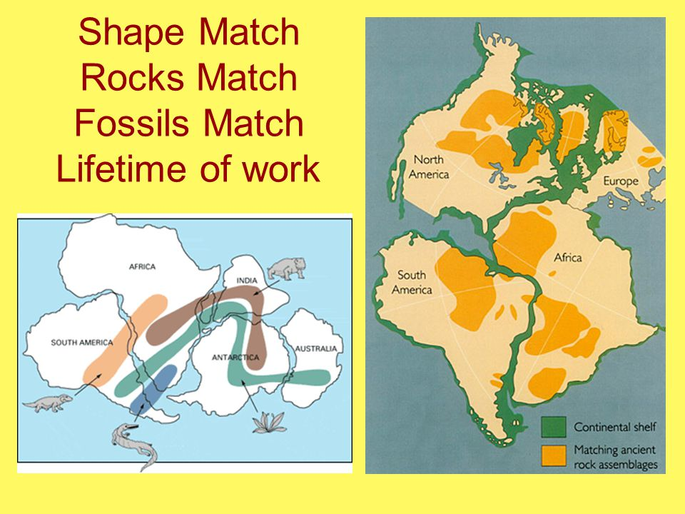 Shape Match Rocks Match Fossils Match Lifetime of work