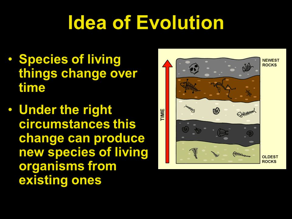Idea of Evolution Species of living things change over time Under the right circumstances this change can produce new species of living organisms from existing ones