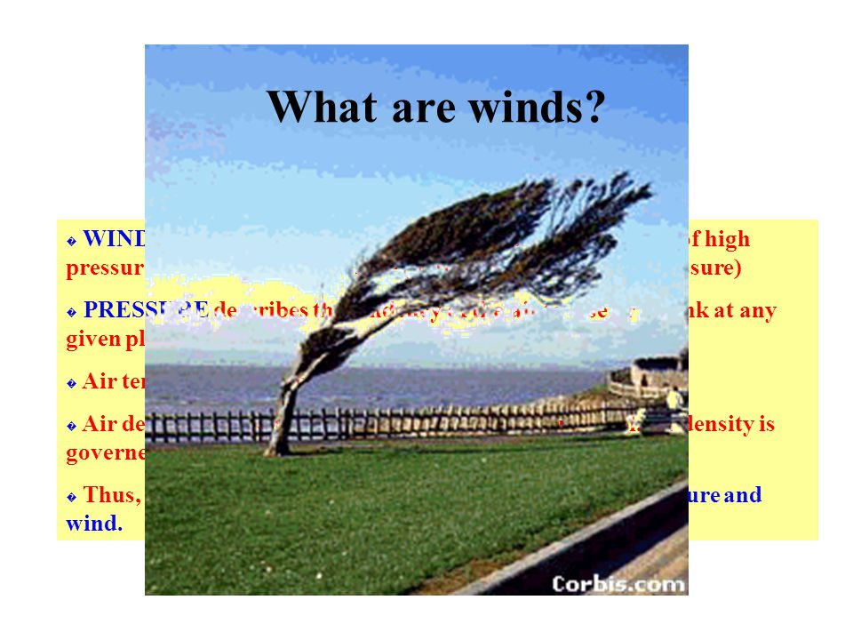 � WINDS are horizontal flows of air; winds blow from areas of high pressure to areas of low pressure (nature tries to equalise pressure) � PRESSURE describes the tendency of the air to rise or to sink at any given place or time.