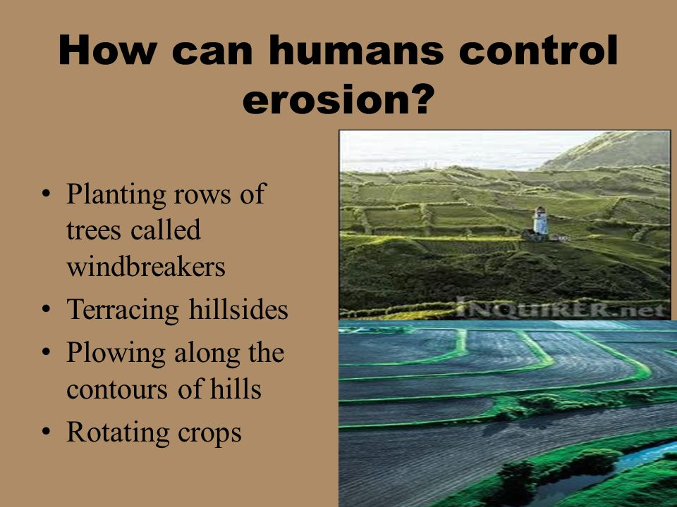 Planting rows of trees called windbreakers Terracing hillsides Plowing along the contours of hills Rotating crops
