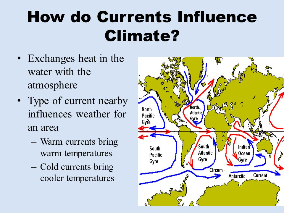 Exchanges heat in the water with the atmosphere Type of current nearby influences weather for an area – Warm currents bring warm temperatures – Cold c