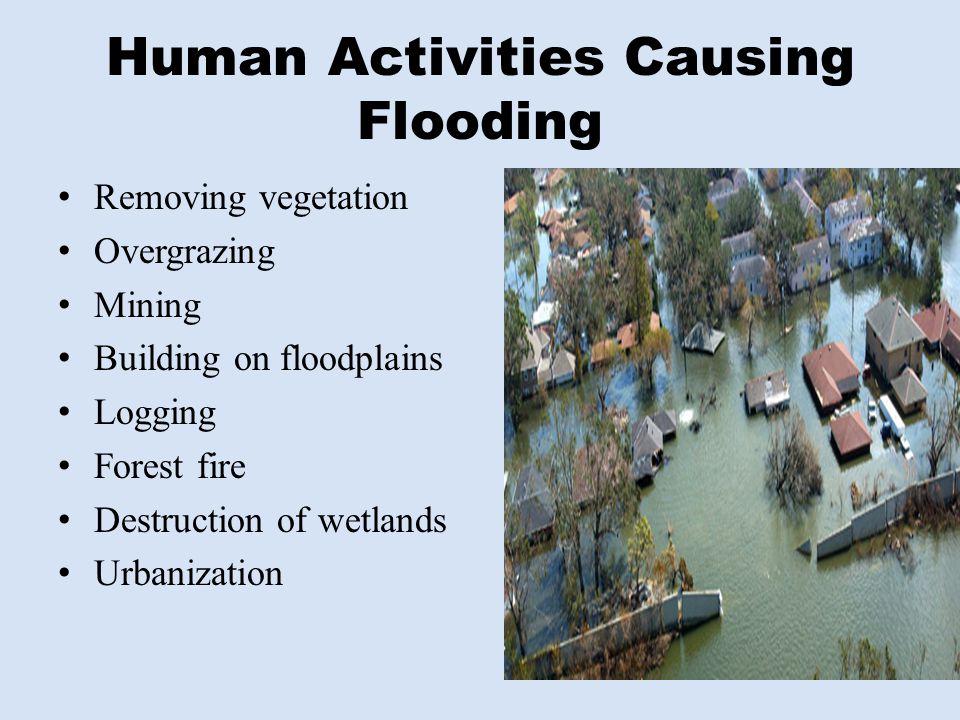 Human Activities Causing Flooding Removing vegetation Overgrazing Mining Building on floodplains Logging Forest fire Destruction of wetlands Urbanizat
