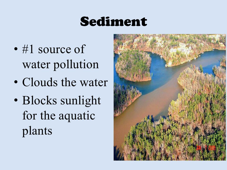 Sediment #1 source of water pollution Clouds the water Blocks sunlight for the aquatic plants
