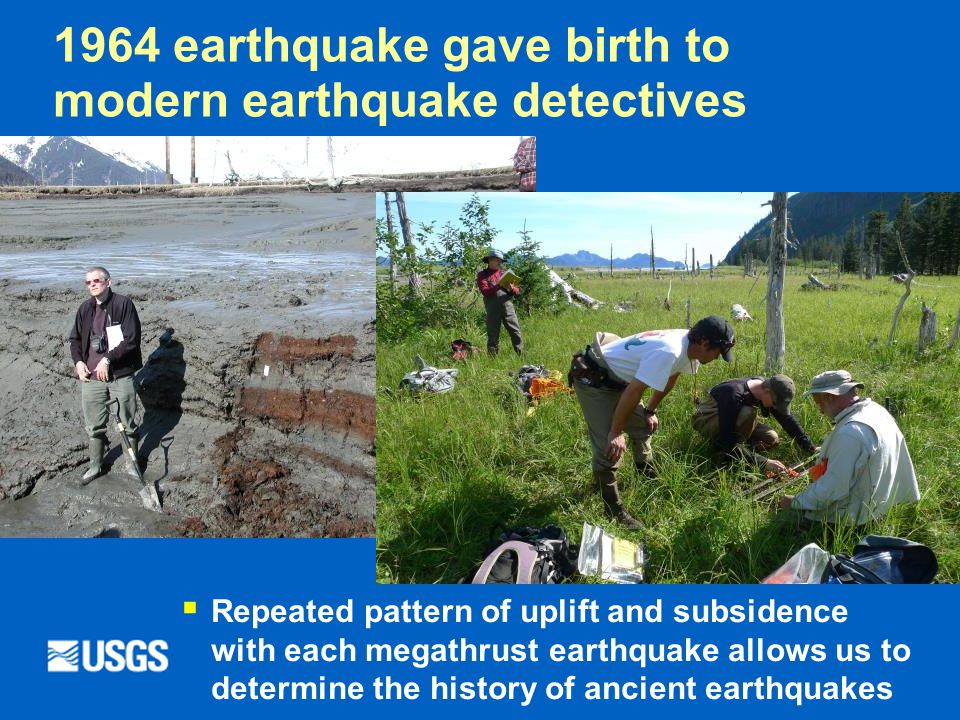 1964 earthquake gave birth to modern earthquake detectives  Repeated pattern of uplift and subsidence with each megathrust earthquake allows us to determine the history of ancient earthquakes