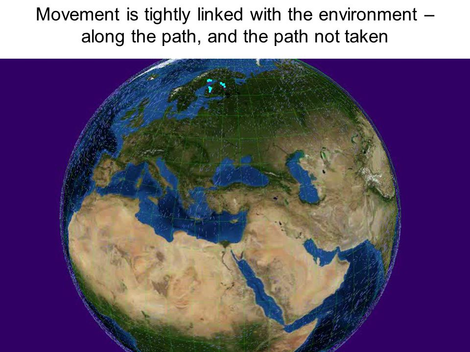 Movement is tightly linked with the environment – along the path, and the path not taken