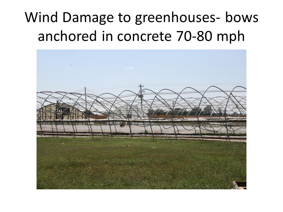 Wind Damage to greenhouses- bows anchored in concrete 70-80 mph