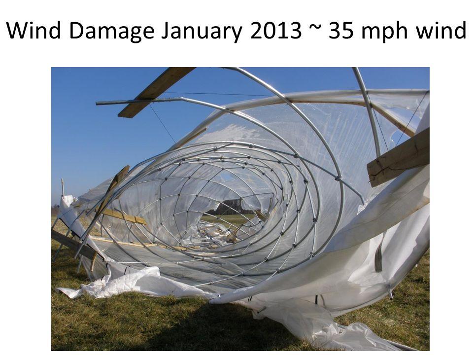 Wind Damage January 2013 ~ 35 mph wind