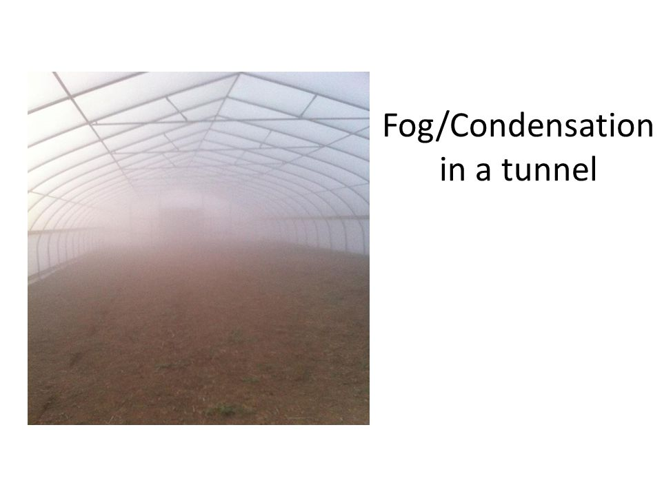 Fog/Condensation in a tunnel