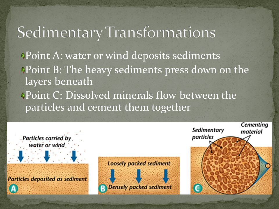Point A: water or wind deposits sediments Point B: The heavy sediments press down on the layers beneath Point C: Dissolved minerals flow between the particles and cement them together