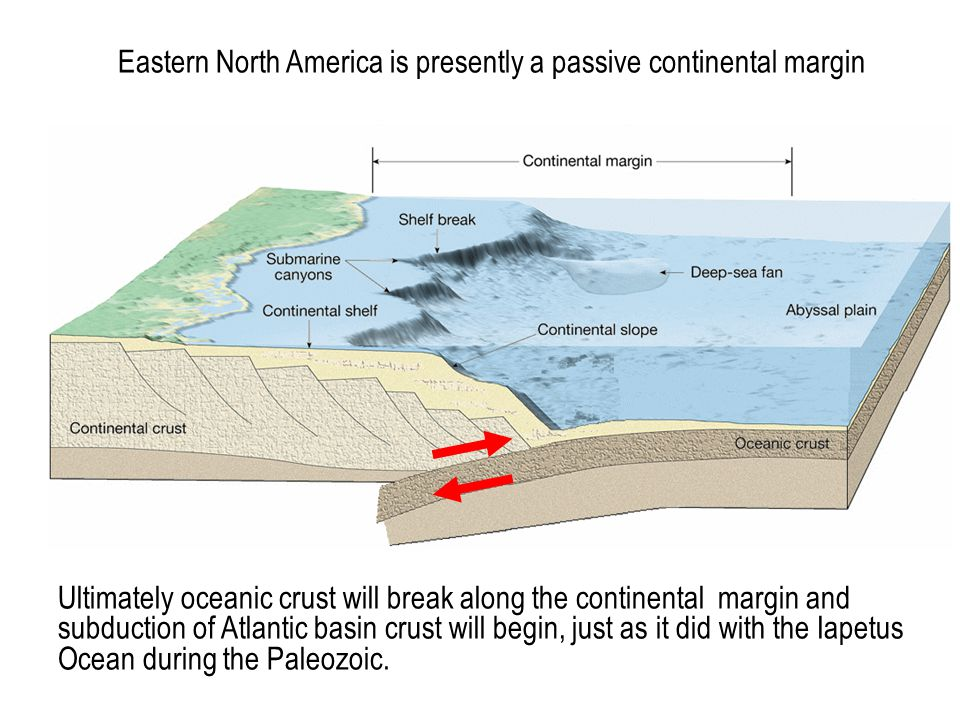 Eastern North America is presently a passive continental margin Ultimately oceanic crust will break along the continental margin and subduction of Atl