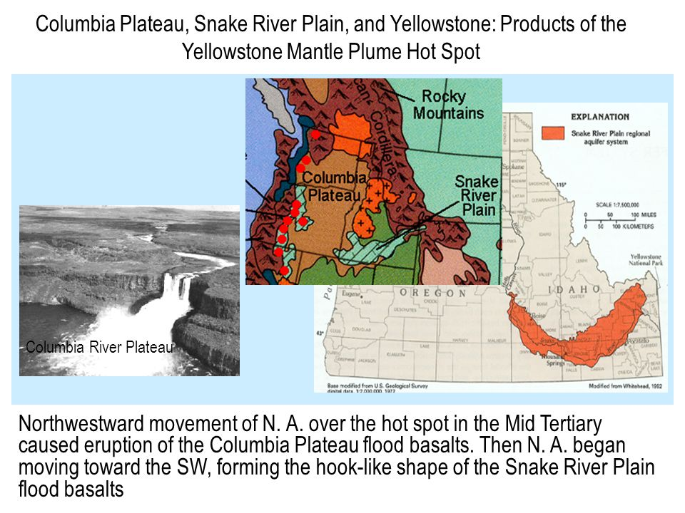 Columbia Plateau, Snake River Plain, and Yellowstone: Products of the Yellowstone Mantle Plume Hot Spot Columbia River Plateau Northwestward movement