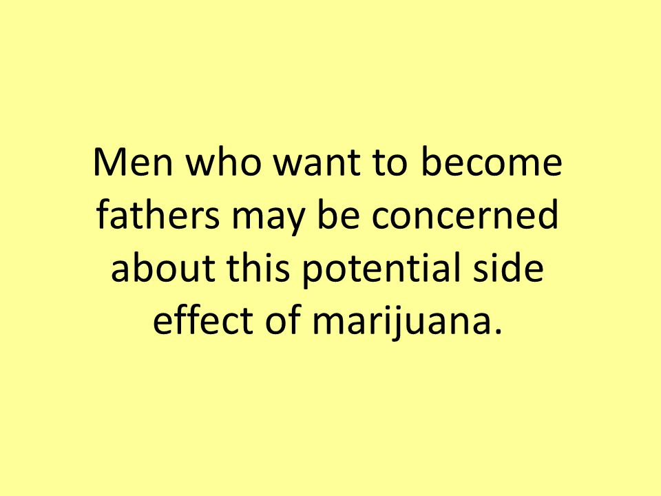 Men who want to become fathers may be concerned about this potential side effect of marijuana.