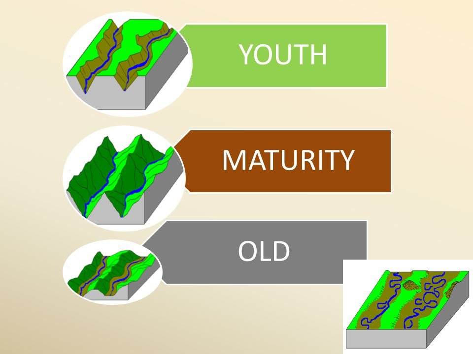 YOUTH MATURITY OLD 13