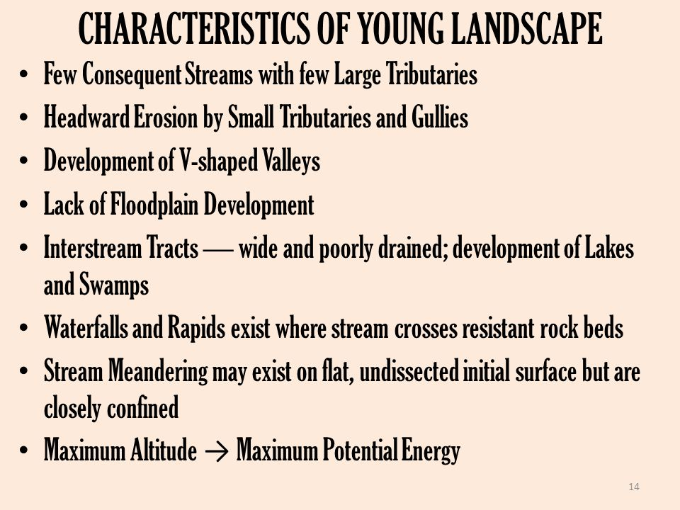 CHARACTERISTICS OF YOUNG LANDSCAPE Few Consequent Streams with few Large Tributaries Headward Erosion by Small Tributaries and Gullies Development of V-shaped Valleys Lack of Floodplain Development Interstream Tracts — wide and poorly drained; development of Lakes and Swamps Waterfalls and Rapids exist where stream crosses resistant rock beds Stream Meandering may exist on flat, undissected initial surface but are closely confined Maximum Altitude → Maximum Potential Energy 14