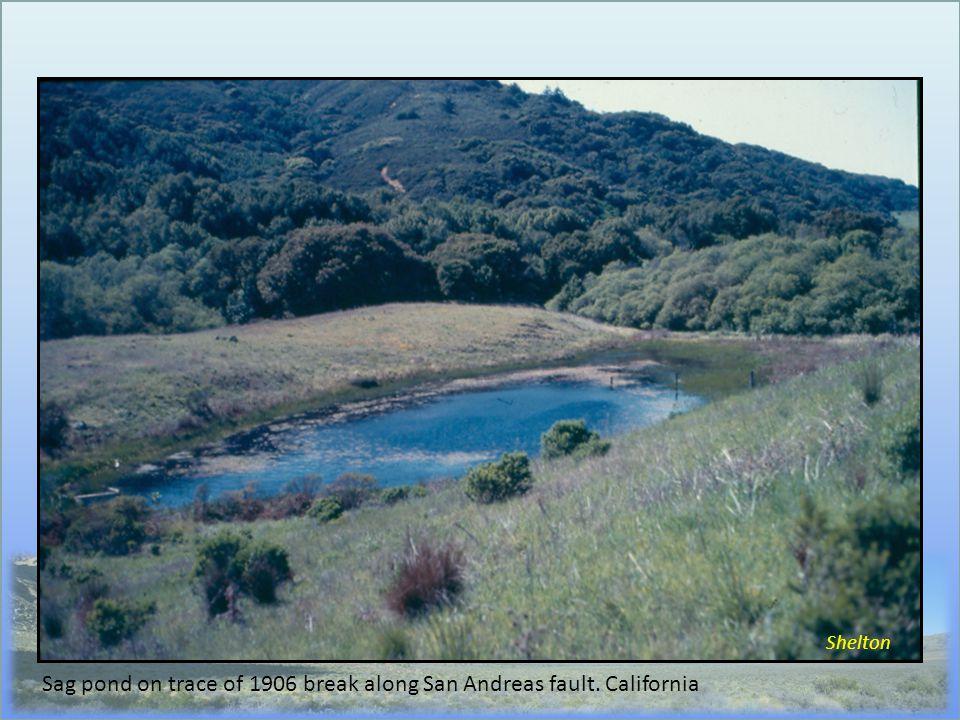 Shelton Sag pond on trace of 1906 break along San Andreas fault. California