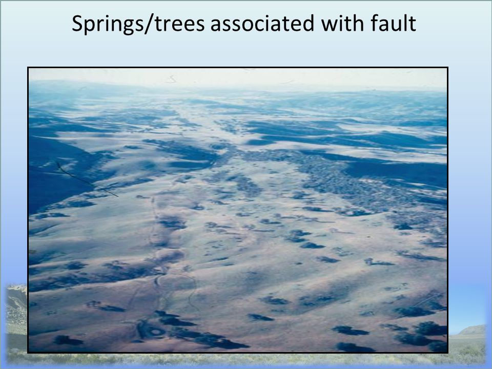 Springs/trees associated with fault