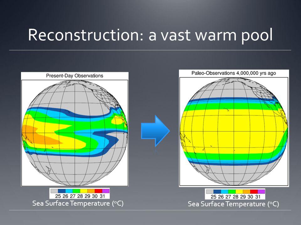 Reconstruction: a vast warm pool Sea Surface Temperature ( o C)