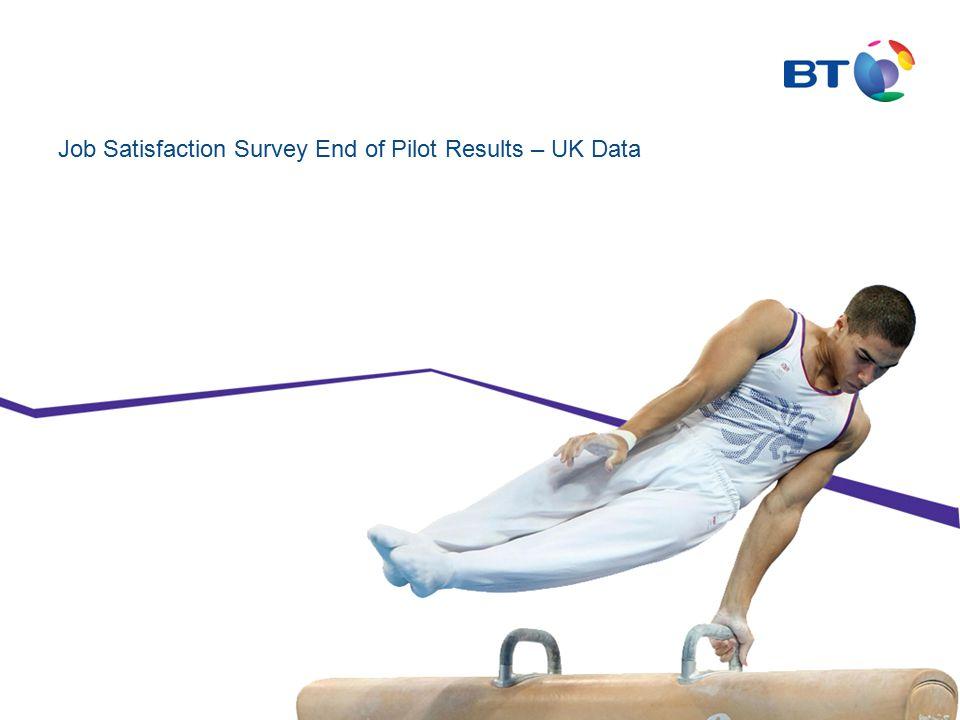 Job Satisfaction Survey End of Pilot Results – UK Data