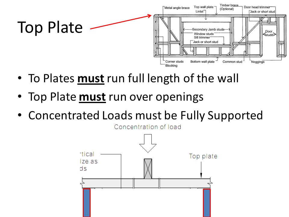 Top Plate To Plates must run full length of the wall Top Plate must run over openings Concentrated Loads must be Fully Supported