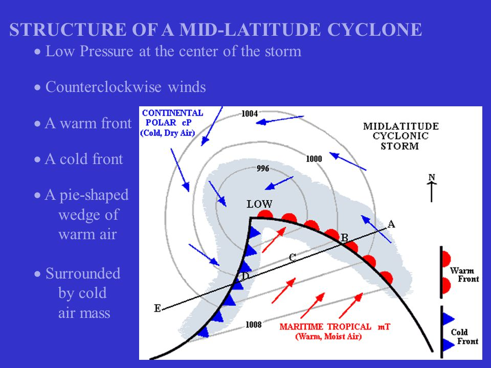 CROSS-SECTION OF A MID-LATITUDE STORM  Lighter, warm, moist air rides up over cold air – Warm Front  Denser, cold air pushes into warmer air and forces it to rise – Cold Front