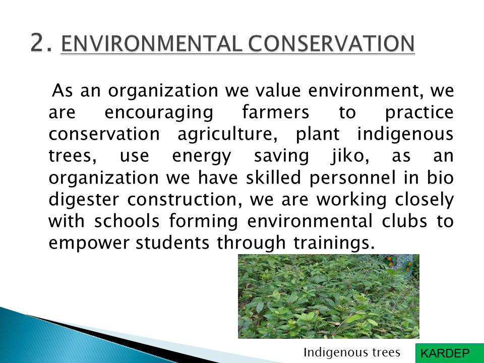 As an organization we value environment, we are encouraging farmers to practice conservation agriculture, plant indigenous trees, use energy saving jiko, as an organization we have skilled personnel in bio digester construction, we are working closely with schools forming environmental clubs to empower students through trainings.