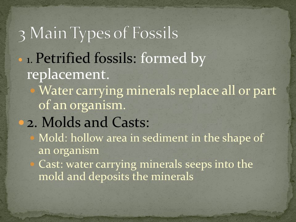 3.Carbon films: As a buried plant or animal decays, it releases gases containing carbon.