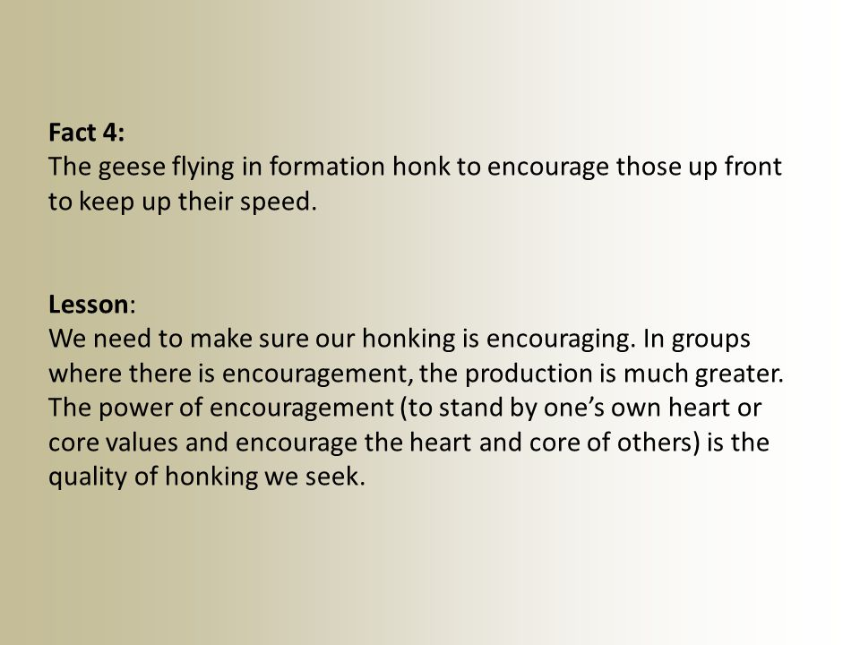 Fact 4: The geese flying in formation honk to encourage those up front to keep up their speed.