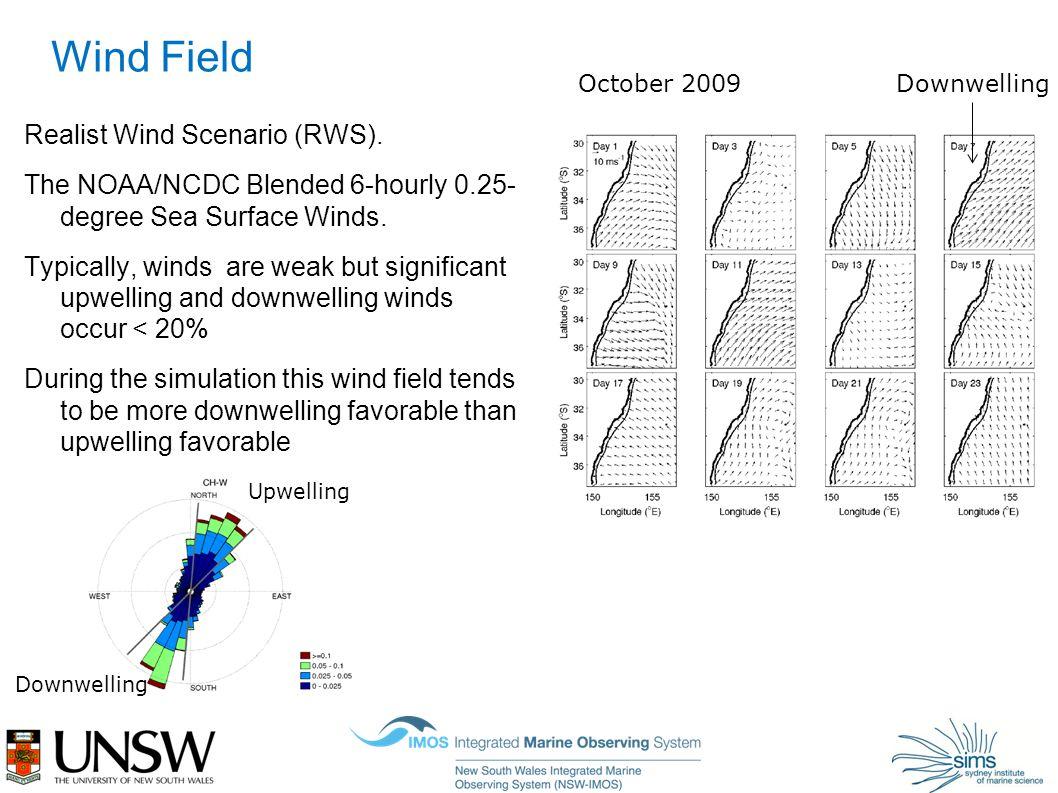 Wind Field Realist Wind Scenario (RWS).