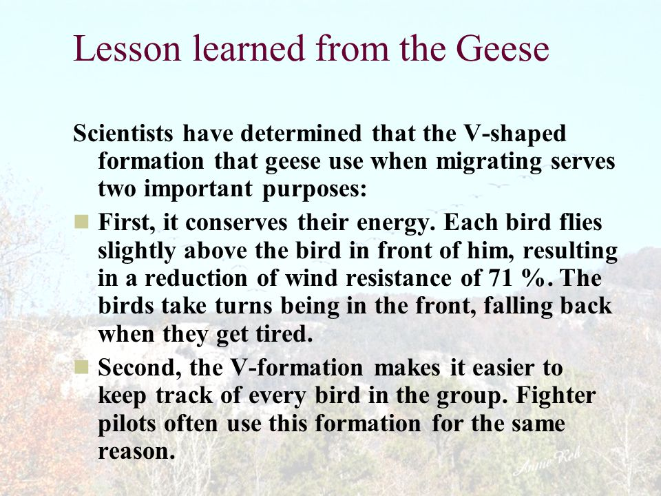 Lesson learned from the Geese Scientists have determined that the V-shaped formation that geese use when migrating serves two important purposes: First, it conserves their energy.