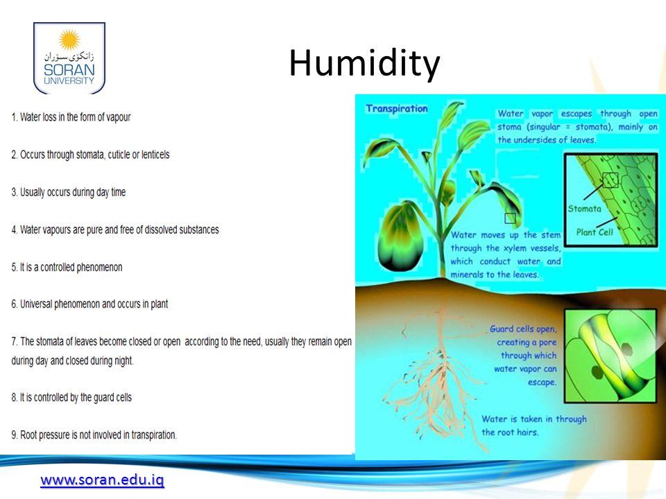www.soran.edu.iq Humidity