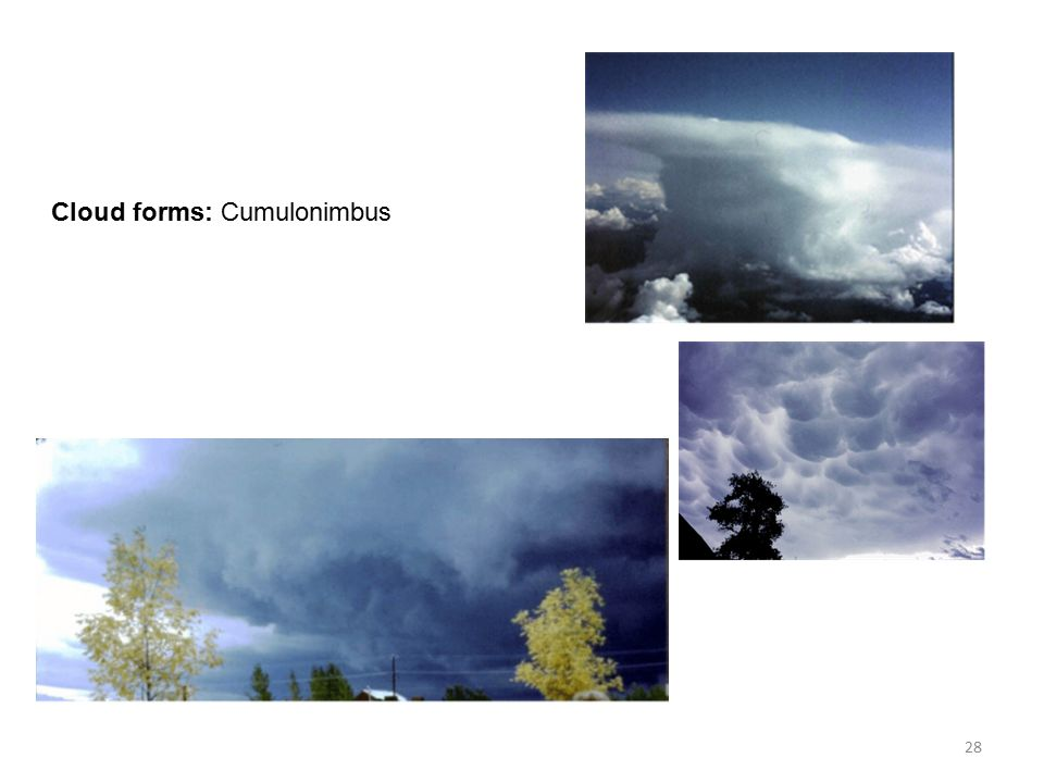 Cloud forms: Cumulonimbus 28