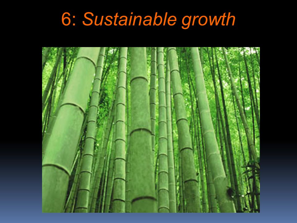 6: Sustainable growth