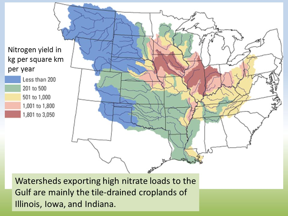 Watersheds exporting high nitrate loads to the Gulf are mainly the tile-drained croplands of Illinois, Iowa, and Indiana.